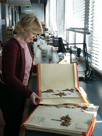 Herbarium with Adele Smith